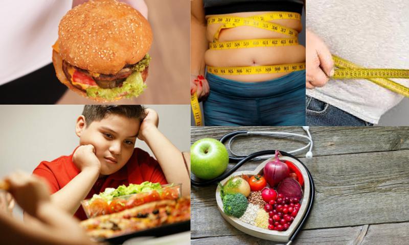 Obezite Olmanızın Nedenleri?